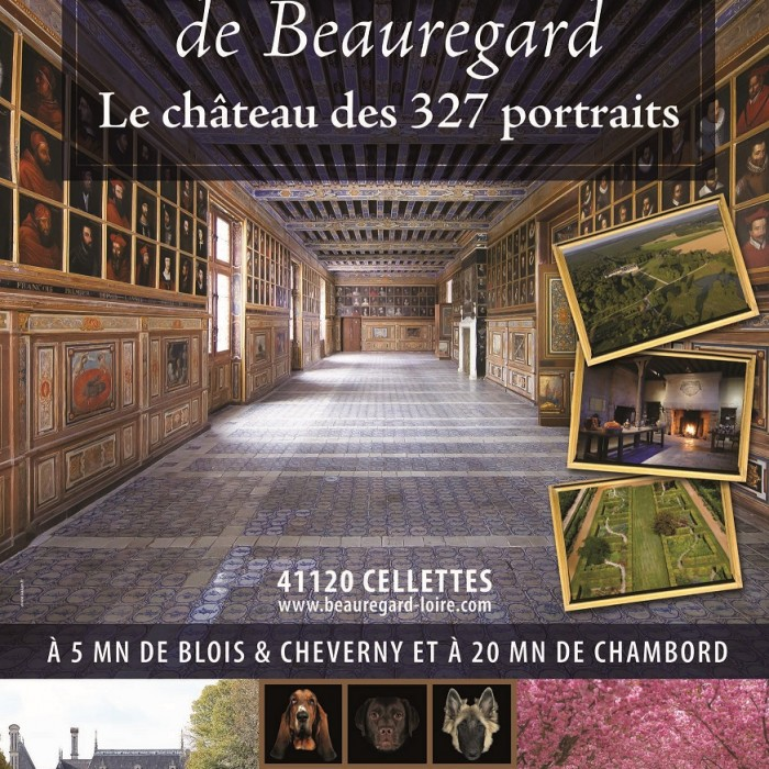 Photo de Château de Beauregard à Cellettes