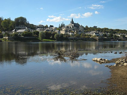 Photo de Candes-Saint-Martin : plus beau village de l'Indre-et-Loire